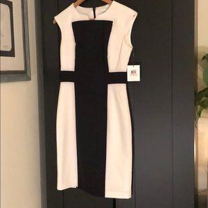 NWT Calvin Klein black and white dress size 2